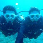 沖縄ダイビング☆2/18  珊瑚のお花畑体験ダイビング  13:00~ しおん