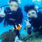 沖縄ダイビング☆2/21  サンゴ礁体験ダイビング   10:30~ たく