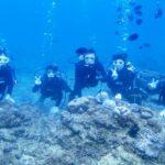 沖縄ダイビング☆2/24  珊瑚のお花畑体験ダイビング 8:00~  たく・なすび