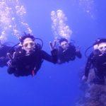 沖縄ダイビング☆2/24  珊瑚のお花畑体験ダイビング 10:30~ なすび・たく