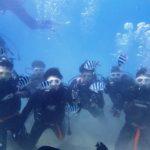沖縄ダイビング☆2/26  サンゴ礁体験ダイビング   10:30~ たく・せいや・山田