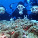 沖縄ダイビング☆2/27  珊瑚のお花畑体験ダイビング  13:00~ たく・なすび