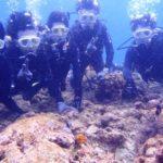 沖縄ダイビング☆2/28  青の洞窟体験ダイビング  10:30~ なすび・たく