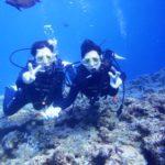 沖縄ダイビング☆3/27  青の洞窟体験ダイビング   15:30~ なすび