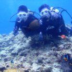 沖縄ダイビング☆3/28  青の洞窟体験ダイビング   10:30~ なすび・りさ