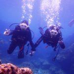 沖縄ダイビング☆3/28  青の洞窟体験ダイビング    10:30〜  しおん