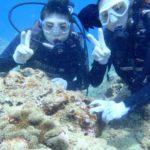 沖縄ダイビング☆3/30 珊瑚のお花畑体験ダイビング 13:00~ なすび