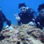 沖縄ダイビング☆3/30 珊瑚のお花畑体験ダイビング 10:30~ なすび