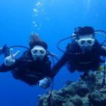 沖縄ダイビング☆4/30 サンゴ礁体験ダイビング 8:00~ なすび
