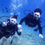 沖縄ダイビング☆4/1  サンゴのお花畑体験ダイビング   10:30~ しおん・りさ