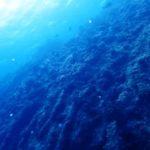 沖縄ダイビング☆4/4  辺戸岬ボートFUNダイビング    なすび