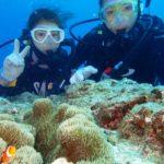 沖縄ダイビング☆4/9 珊瑚のお花畑体験ダイビング2本  8:00~ たく
