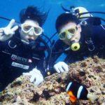 沖縄ダイビング☆4/10  青の洞窟体験ダイビング   15:00~ なすび