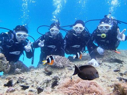 沖縄ダイビング☆4/15  サンゴ礁体験ダイビング   12:00~ たく・しおん