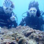 沖縄ダイビング☆4/16 サンゴ礁体験ダイビング 15時~ しおん