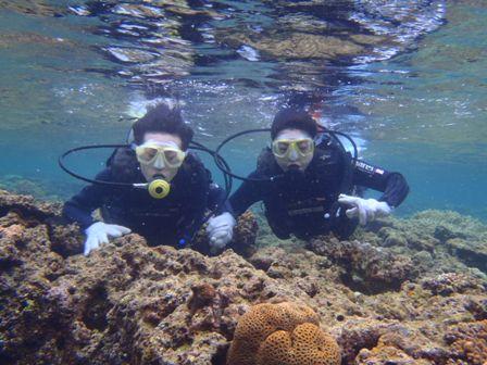 沖縄ダイビング☆4/19   珊瑚のお花畑体験ダイビング 13:00~ なすび