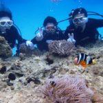 沖縄ダイビング☆4/25 サンゴ礁体験ダイビング 10:30~ たく