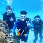 沖縄ダイビング☆4/25 サンゴ礁体験ダイビング 11:00~ しおん
