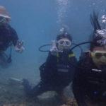 沖縄ダイビング☆5/3 サンゴ礁体験ダイビング 14:00~ なすび・しおん