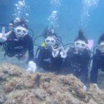 沖縄ダイビング☆5/3 サンゴ礁体験ダイビング 12:00~ しおん・なすび