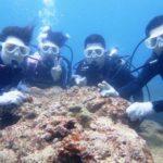 沖縄ダイビング☆5/4 サンゴ礁体験ダイビング 12:30~ しおん・えりな