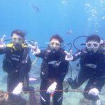 沖縄ダイビング☆5/4 サンゴ礁体験ダイビング 10:30~ しおん