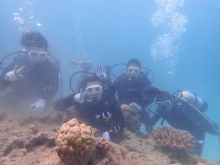 沖縄ダイビング☆6/17 9時〜 サンゴ礁体験ダイビング&スノーケル    しおん・なすび