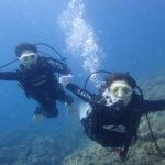 沖縄ダイビング☆6/28 サンゴ礁体験ダイビング 15:30~ なすび