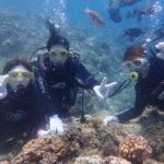 沖縄ダイビング☆6/28 青の洞窟体験ダイビング 13:30~ なすび・しおん