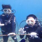 沖縄ダイビング☆6/12 サンゴ礁体験2ダイビング 8:00~ しおん