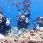 沖縄ダイビング☆6/21 サンゴ礁体験ダイビング10:30~ なすび・しおん