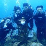 沖縄ダイビング☆ 6/30 サンゴ礁体験ダイビング 8時~ たく