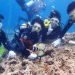 沖縄ダイビング☆7/7 10時半 青の洞窟体験ダイビング    担当なすび・りさ