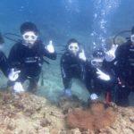 沖縄ダイビング☆7/9  サンゴ礁体験ダイビング 15時半 なすび・たく