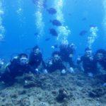 沖縄ダイビング☆7/14 青の洞窟体験ダイビング 8:00~ しおん・なすび