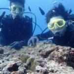 沖縄ダイビング☆7/15 サンゴ礁体験ダイビング 15:30~ なすび