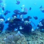 沖縄ダイビング☆7/15 青の洞窟体験ダイビング 15:30~ しおん・たく
