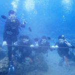 沖縄ダイビング☆ 7/20 珊瑚体験ダイビング 13時~ しおん・たく