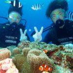 沖縄ダイビング☆7/27 サンゴ礁体験ダイビング 15:00~ たく
