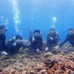 沖縄ダイビング☆7/28 サンゴ礁体験2ダイビング 8:00~ しおん・とも