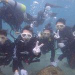 沖縄ダイビング☆8/2 サンゴ礁体験ダイビング 12:50~ なすび・しおん