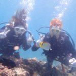 沖縄ダイビング☆8/4  青の洞窟体験ダイビング  10時半  しおん