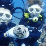 沖縄ダイビング☆8/7 15時~ サンゴ礁体験ダイビング  なすび