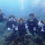 沖縄ダイビング☆8/7 サンゴ礁体験ダイビング 15時半 しおん・たく