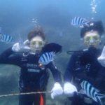沖縄ダイビング☆8/8 サンゴ礁体験ダイビング 15時半 たく