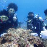 沖縄ダイビング☆8/8 13時~ サンゴ礁体験ダイビング   なすび・たく
