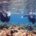 沖縄ダイビング☆8/8 10時半~ サンゴ礁体験ダイビング  たく