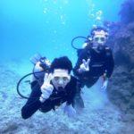 沖縄ダイビング☆8/11 サンゴ礁体験ダイビング 10:30~ しおん