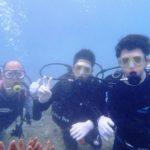 沖縄ダイビング☆8/11 サンゴ礁体験ダイビング 10:30~ なすび