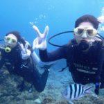 沖縄ダイビング☆8/12 サンゴ礁体験ダイビング 10:30~ たく